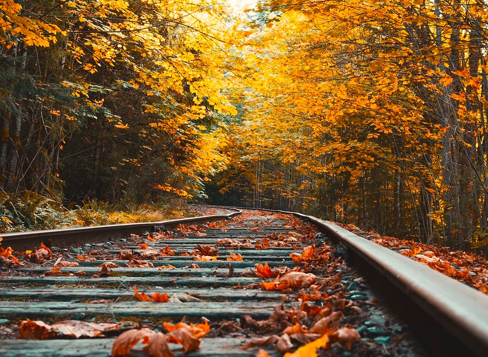 Fall Train Excursion from Zittel's County Market